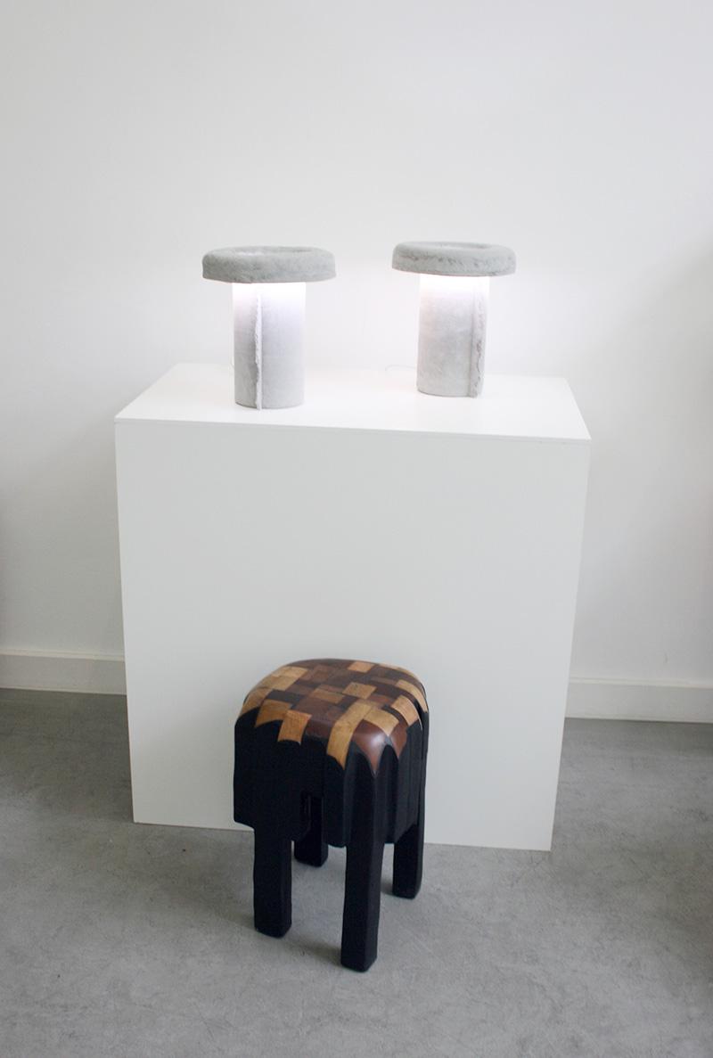 Vue de l'exposition, Nicolas Le Moigne & Valentin Loellmann